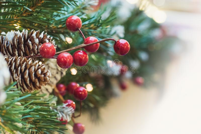 Julgran med röda bär och kotte som dekoren xmas close upp royaltyfri bild