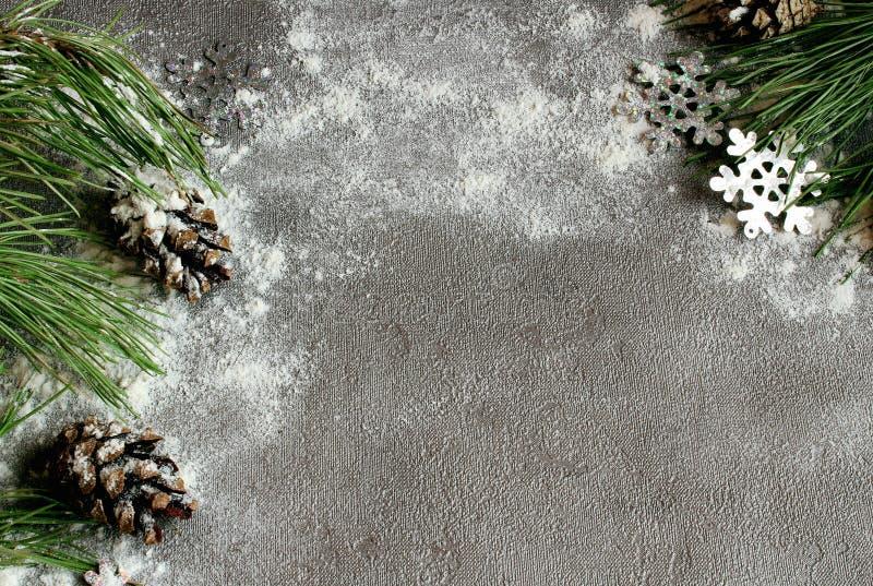 Julgran och kottar i snön på en grå bakgrund och snö för ett hälsningkort för nytt år med fritt utrymme för text fotografering för bildbyråer