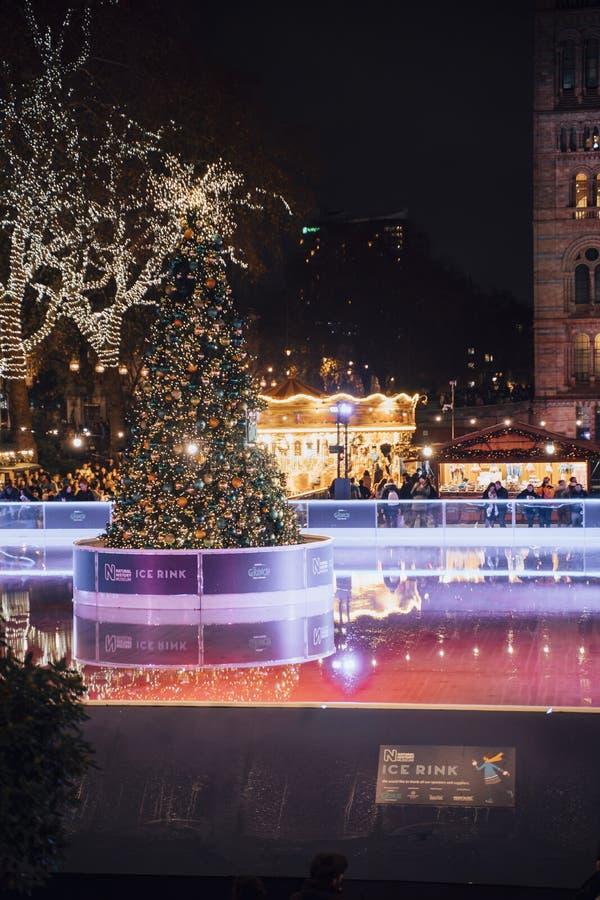 Julgran- och skridskoåkningisbana på natten utanför naturhistoriamuseet royaltyfri foto