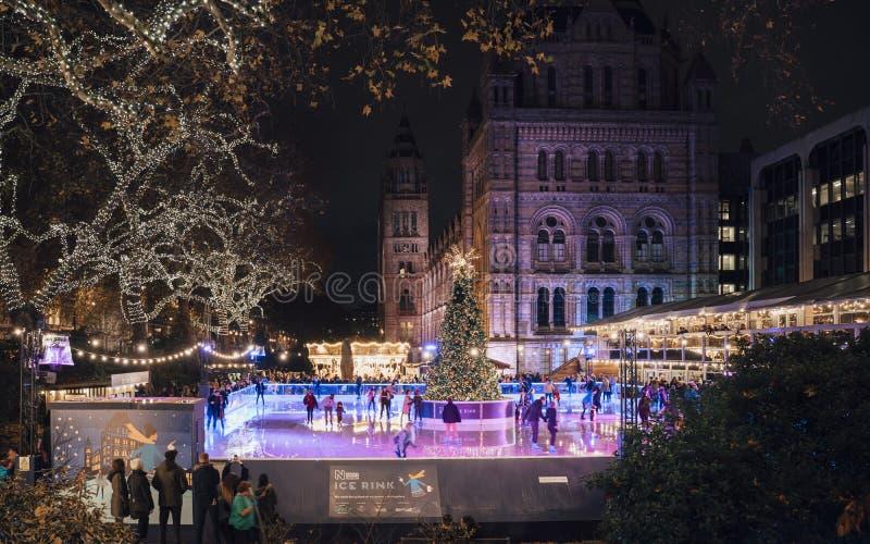 Julgran- och skridskoåkningisbana på natten utanför naturhistoriamuseet royaltyfria bilder
