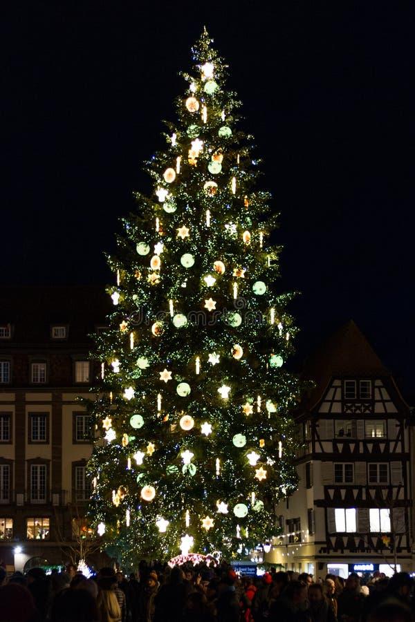 Julgran på Kleber Square på natten i Strasbourg, Alsace, royaltyfri fotografi