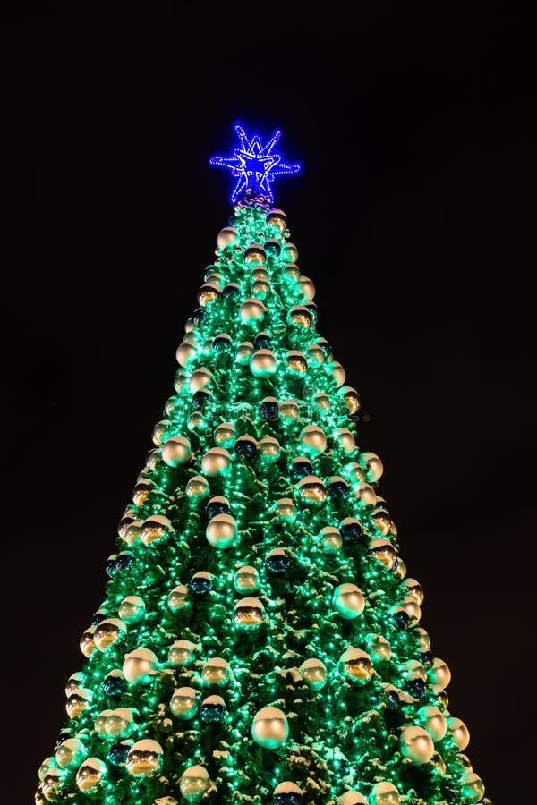 Julgran på natten royaltyfri foto