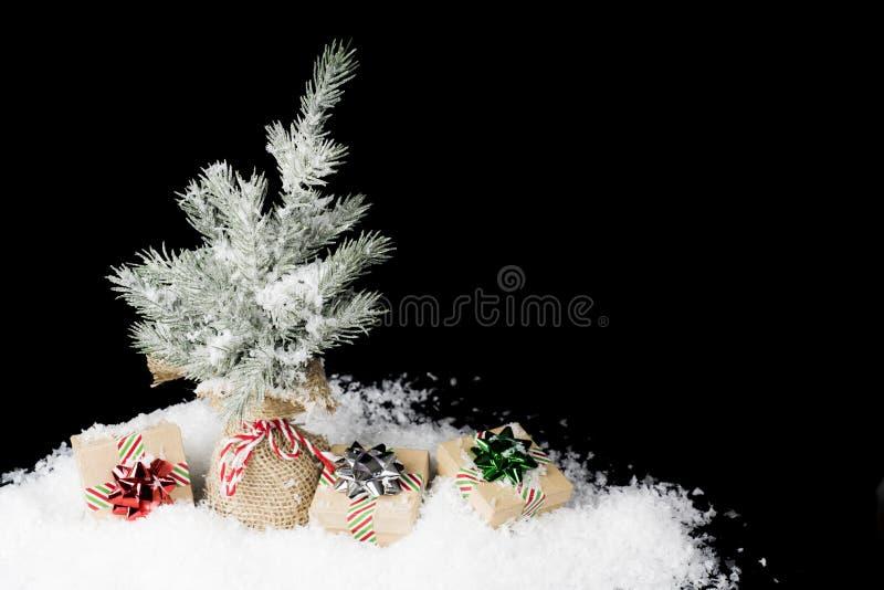 Julgran som slås in i säckväv med enkel wrapp för feriegåvor fotografering för bildbyråer