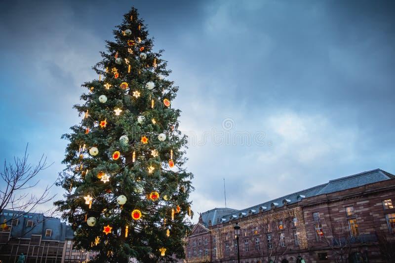 Julgranar på den centrala fyrkanten av Strasbourg arkivbilder
