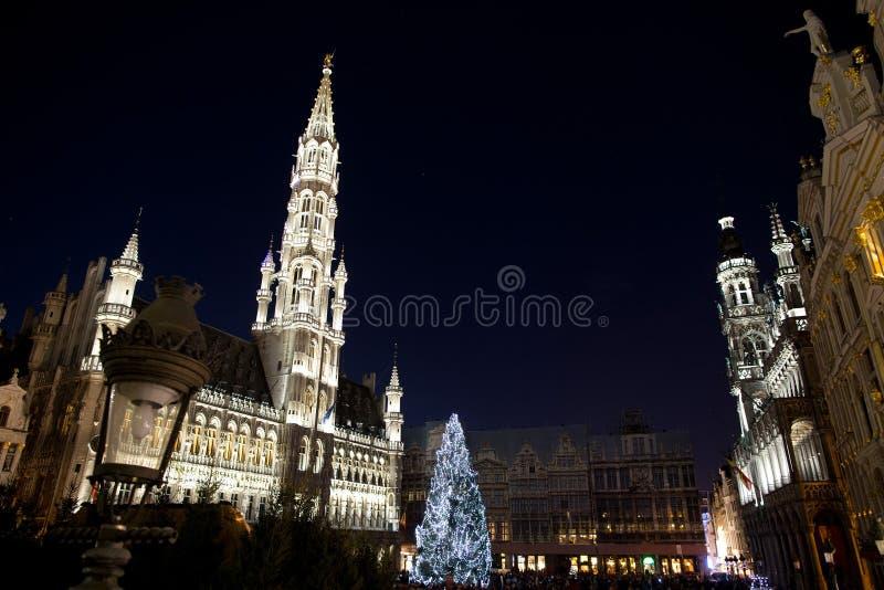Julgranen i tusen dollar förlägger, Bryssel arkivfoto