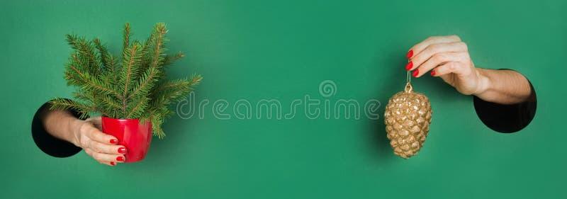 Julgranen och gyllene kong i kvinnliga händer från runt hål i grönboken Xmas-banderoll med utrymme för text Inbjudan till arkivfoton
