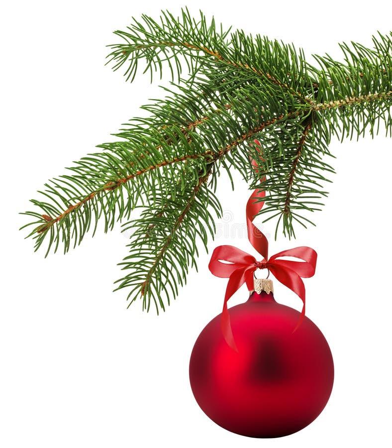 Julgranfilial med den röda bollen som isoleras på den vita backgren arkivfoto