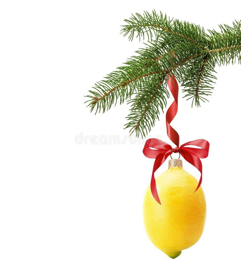 Julgranfilialen med jul klumpa ihop sig i form av citronisolator royaltyfri fotografi