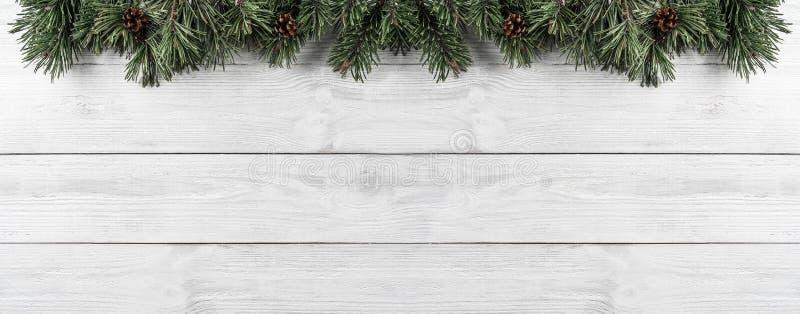 Julgranfilialer med sörjer kottar på vit träbakgrund Tema för Xmas och för lyckligt nytt år Lekmanna- lägenhet, bästa sikt royaltyfri bild