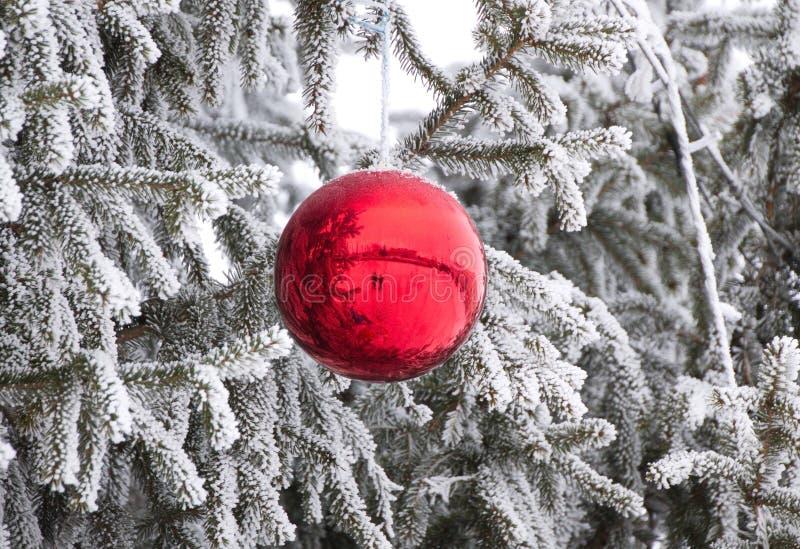 Julgranleksak, röd boll på julgranen med snö arkivbild