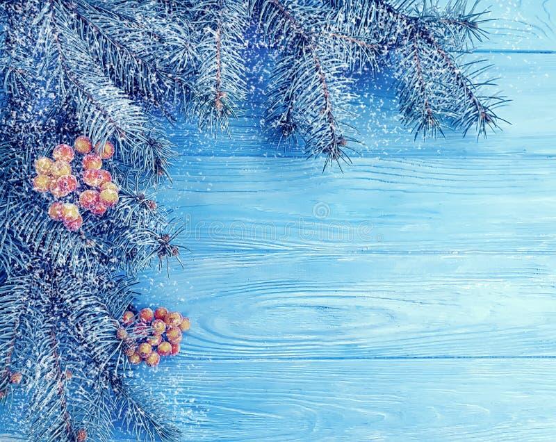Julgranvinterfilialen semestrar vintrig hälsa dekorativ säsong på blå träbakgrund, snö fotografering för bildbyråer
