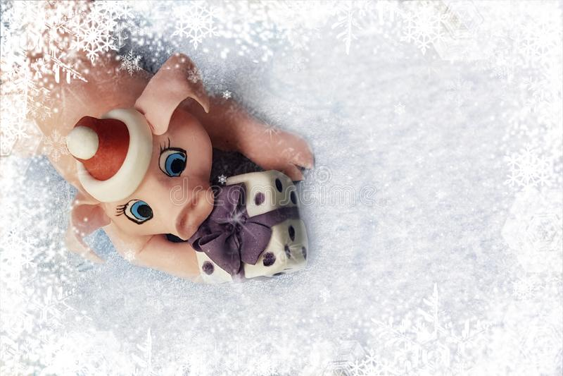 Julhälsningkort - sött rosa svin med gåvan i ramen av vita snöflingor royaltyfri foto