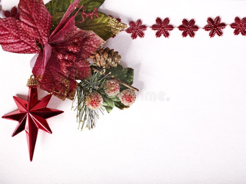 julhörnstjärna arkivfoton