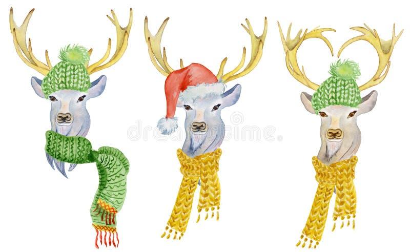 Julhjortar med vintergarneringar hatt och halsduk royaltyfri illustrationer