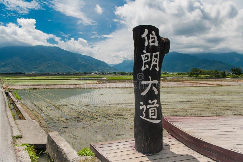 Juli 25,2019: Brun aveny mest berömd dragning på Taitung, landskapsikt av härliga risfält på den bruna avenyn, Chishang fotografering för bildbyråer