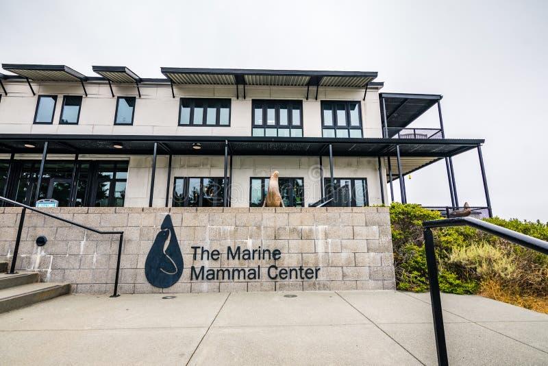 4 juli, 2019 Sausalito/CA/de V.S. - Marine Mammal Center in Marin Headlands in baai die de Noord- van San Francisco wordt gevesti stock afbeeldingen
