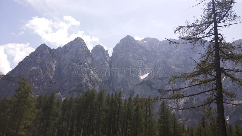 Julijci berg fotografering för bildbyråer
