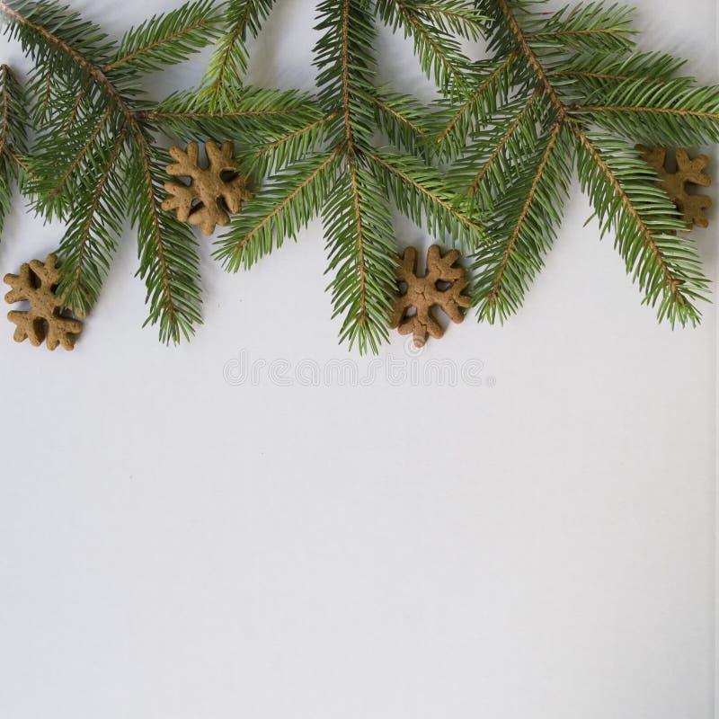 Julkort med filialjulträdet, ingefära- och honungkakor som snöflingor på en vit bakgrund Bakgrund för nytt år, arkivfoto