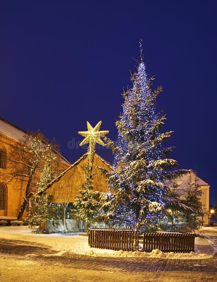 Julkrubba på liten marknadsfyrkant i Torun poland royaltyfria foton