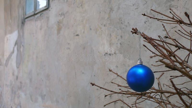 Julleksak på en torr granträdfilial arkivfoton