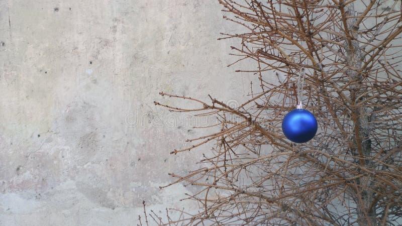 Julleksak på en torr granträdfilial royaltyfria bilder