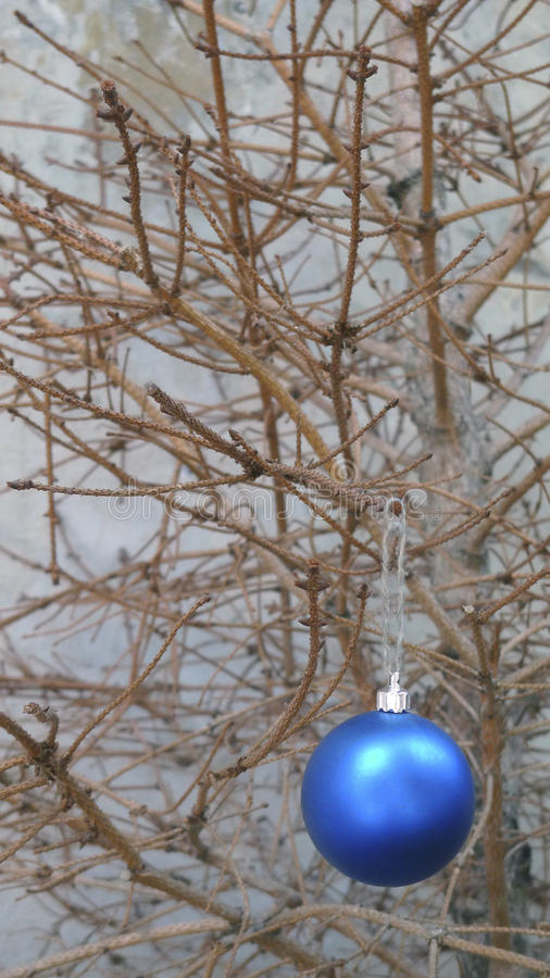 Julleksak på en torr granträdfilial arkivfoto
