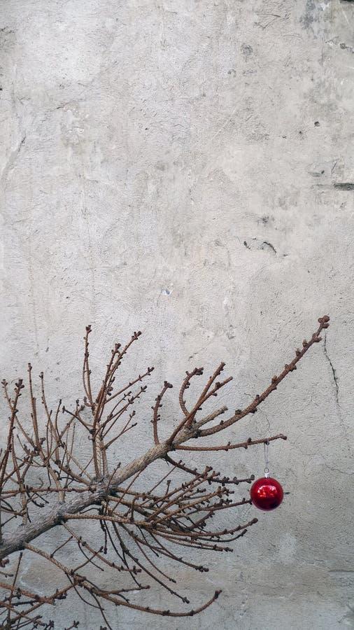 Julleksak på en torr granträdfilial arkivbild