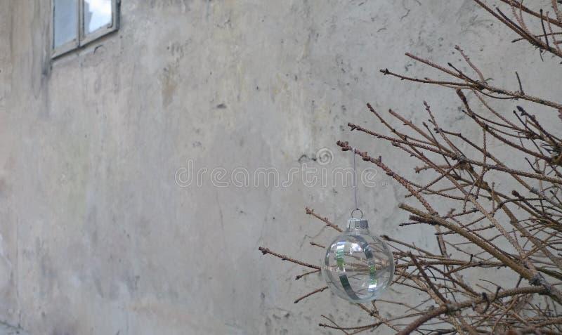 Julleksak på en torr granträdfilial arkivbilder