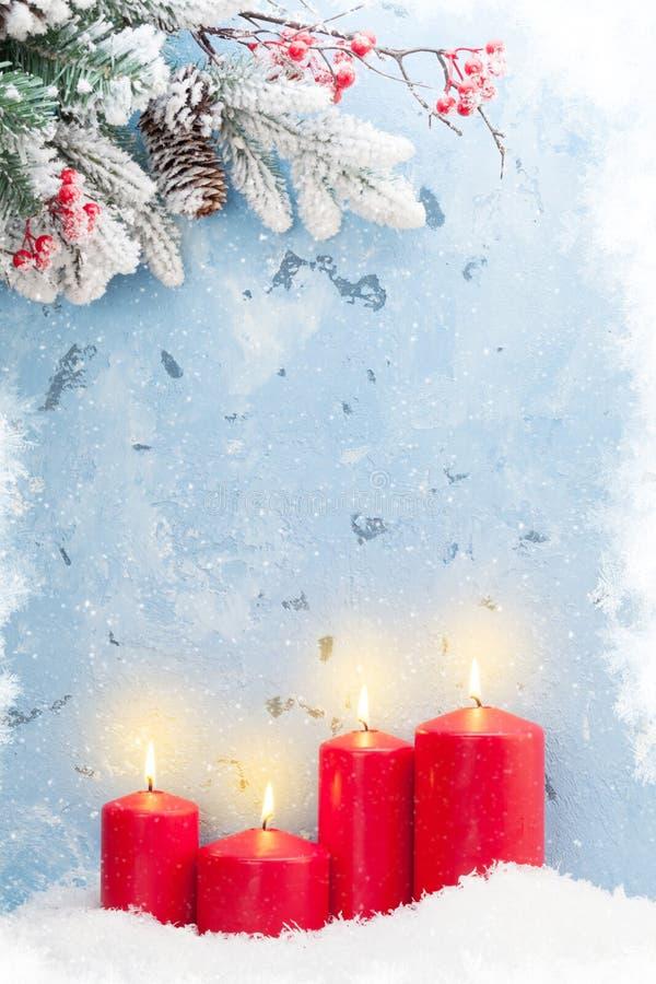 Julljus och granträd royaltyfri bild