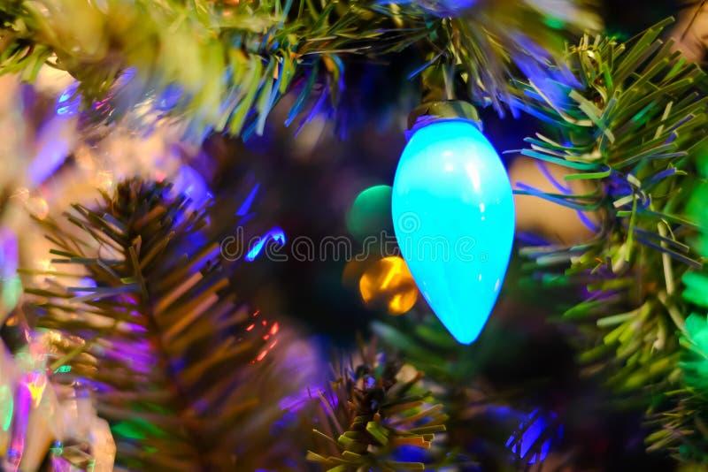 Julljus på ett träd royaltyfria bilder