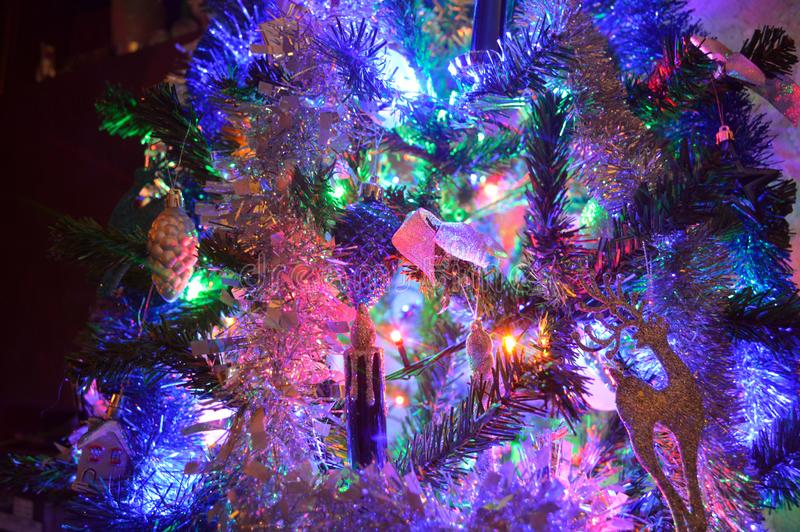Julljus på julgranen royaltyfri bild