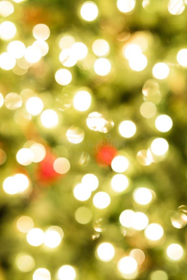 Julljus på träd royaltyfri fotografi