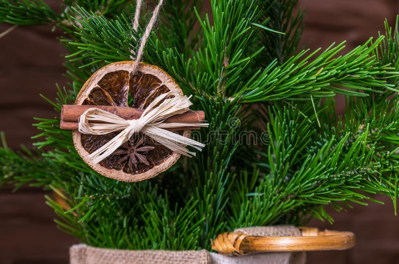 Julordning av torra orange skivor och kanelbruna pinnar på julgranen royaltyfri foto