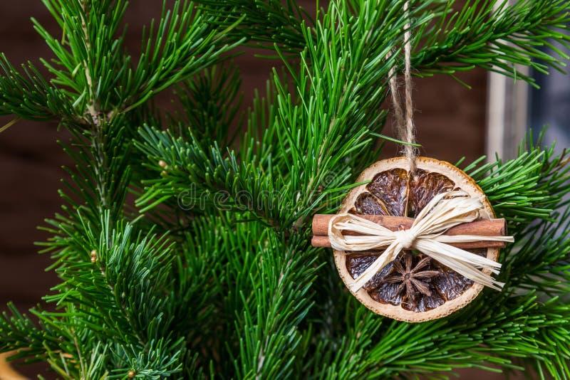 Julordning av torra orange skivor och kanelbruna pinnar på julgranen arkivbilder