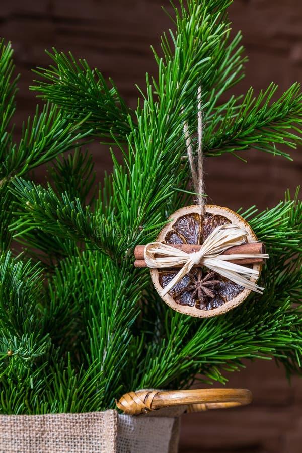 Julordning av torra orange skivor och kanelbruna pinnar på julgranen royaltyfri bild