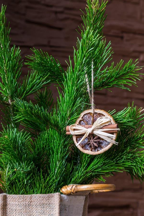 Julordning av torra orange skivor och kanelbruna pinnar på julgranen royaltyfri fotografi