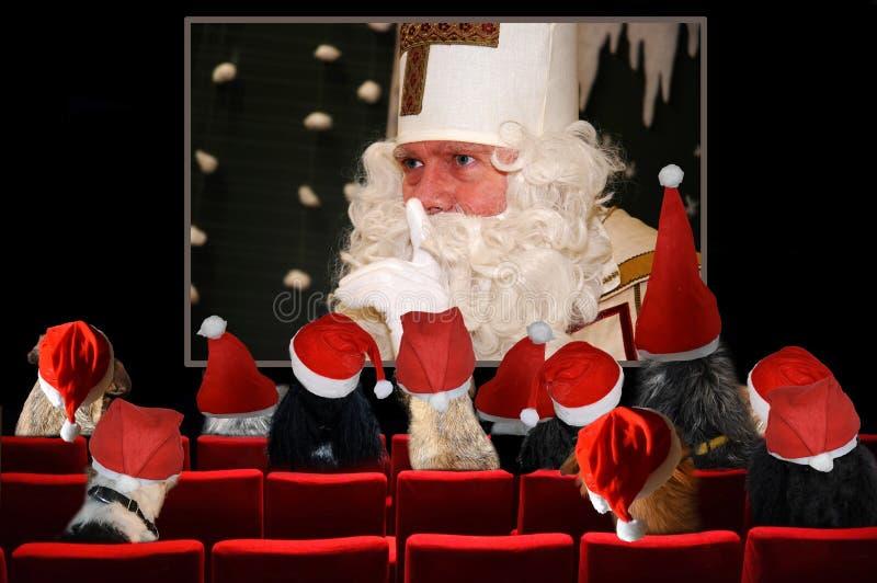 Julparti, hundkapplöpning som ser den Santa Claus filmen i bio royaltyfria foton
