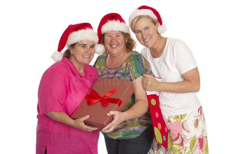 Julpartiet poserar royaltyfria bilder