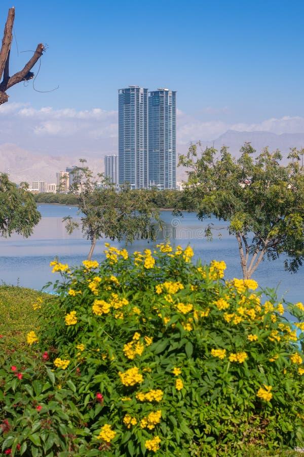Julphar domine vue de Ras al Khaimah Corniche avec de l'eau les fleurs et jaunes images libres de droits