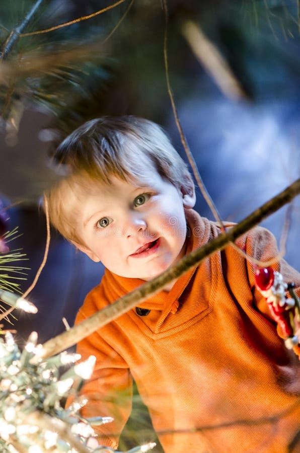 Julpojke fotografering för bildbyråer