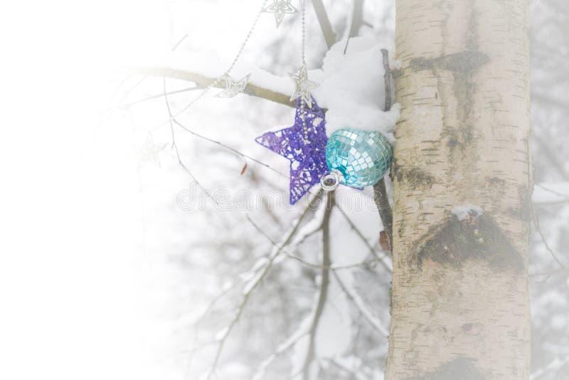Julprydnader på ett träd i en snöig skog efter en snöstorm som visar, vintertid, kallt väder, jul, royaltyfri bild