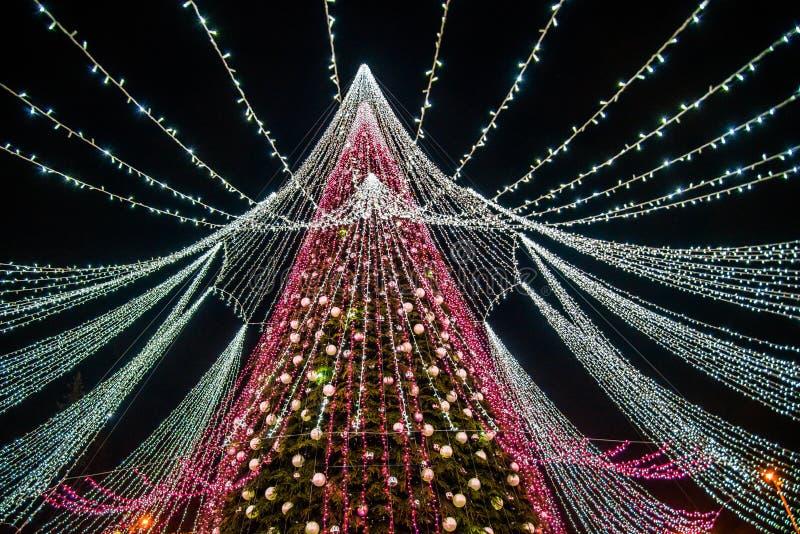 Julsäsong, träd med upplysta ljus arkivfoton