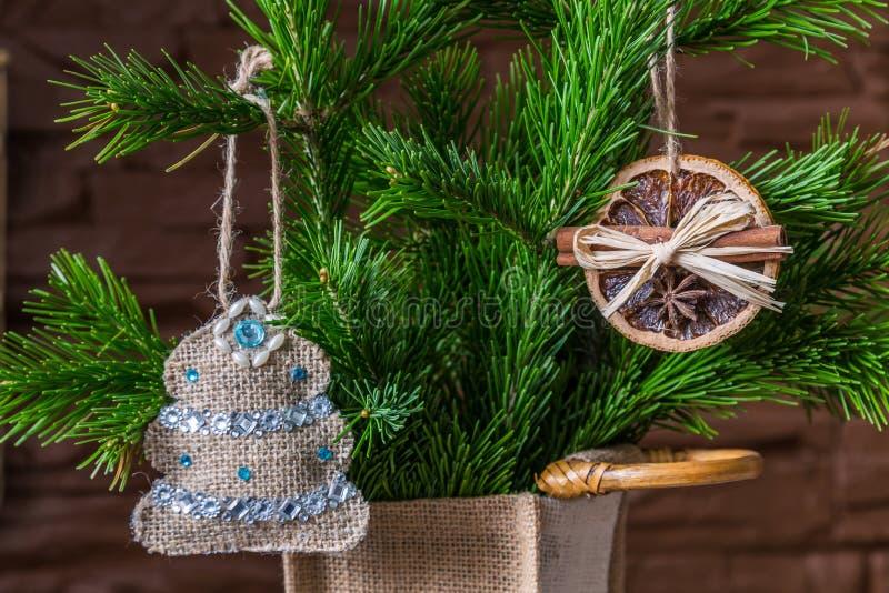 Julsammansättning av torra orange skivor och kanelbruna pinnar och en julgran på en filial royaltyfri foto