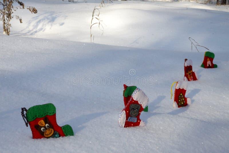 Julsockor i sn?drivor i parkera arkivfoton