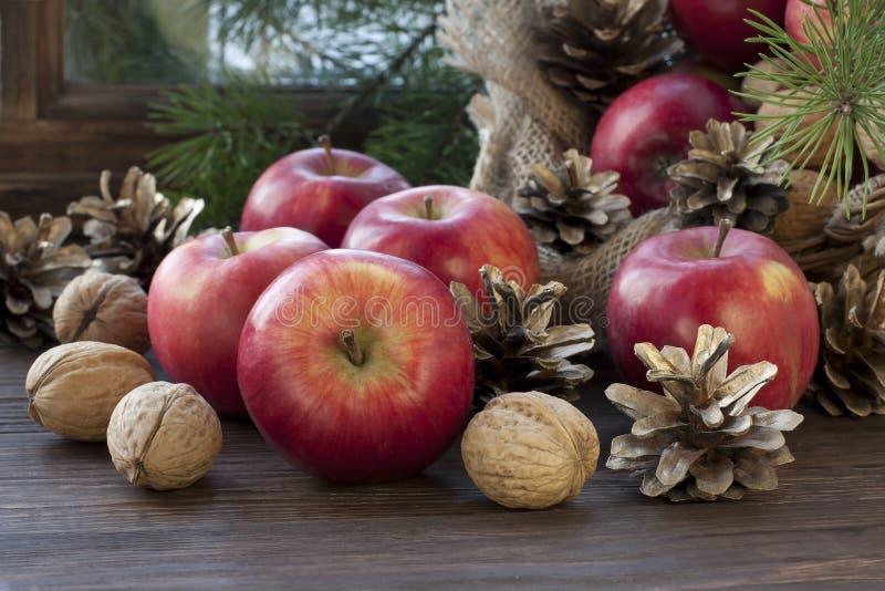 Julstilleben med äpplen och sörjer kottar royaltyfri bild