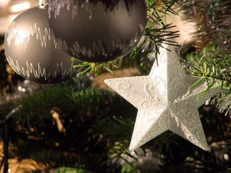 Julstjärna Fotografering för Bildbyråer