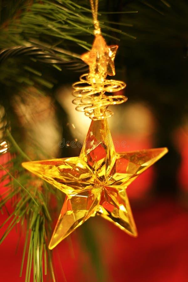 julstjärna arkivbild