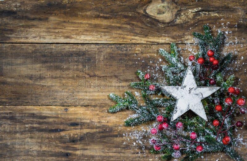 Julstjärna på granträdfilialer och röd bärgarnering arkivbild