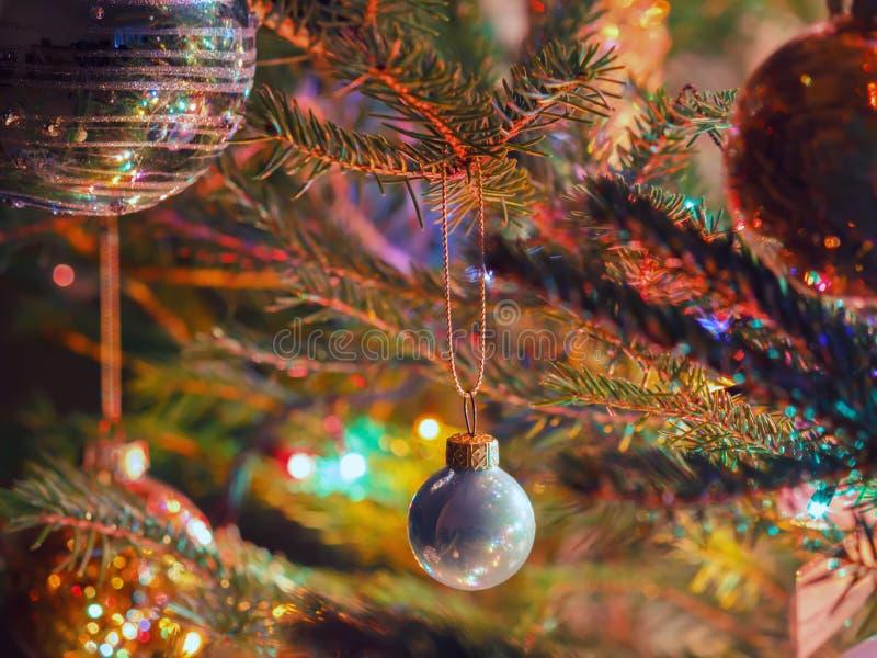 Julstruntsak som hänger på en prydlig filial royaltyfri fotografi