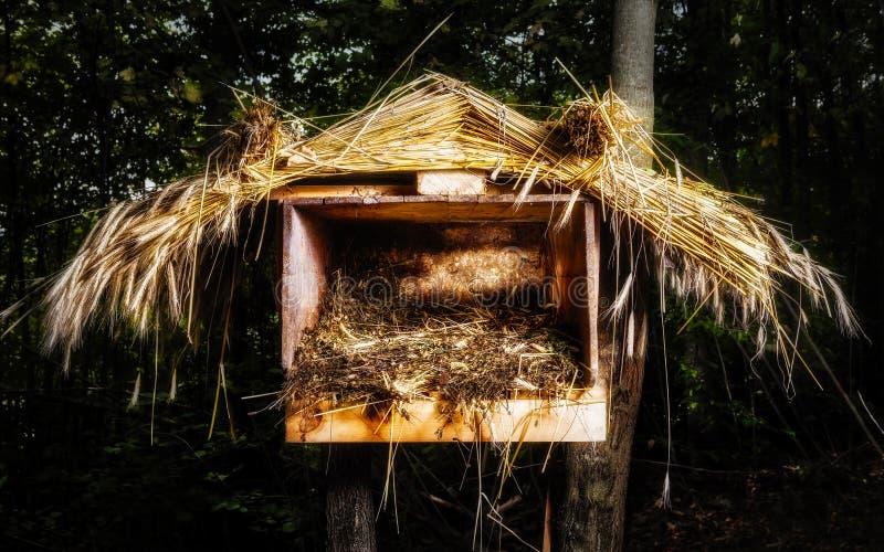 Julsugrörkrubba arkivfoto